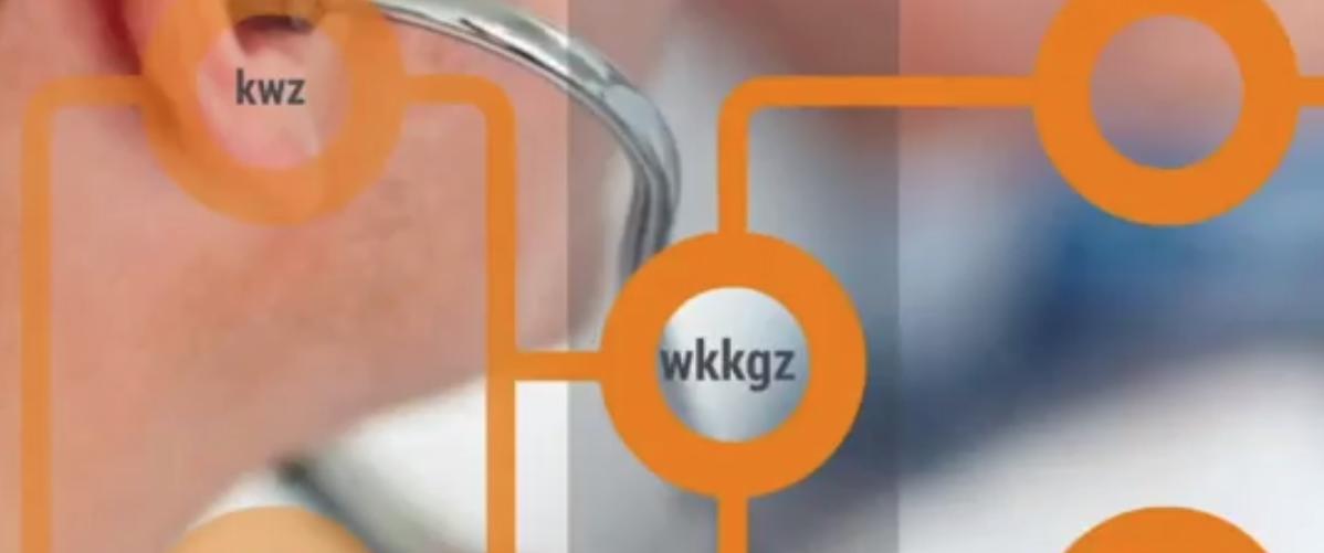 Hulp bij uitvoering Wkkgz
